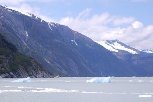 IcebergField1